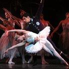 Swan Lake Royal Ballet