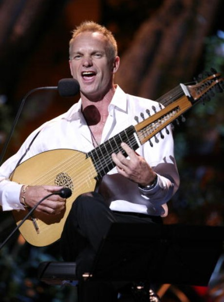 Sting lute