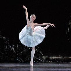 Odette from Swan Lake Royal Ballet