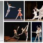 Ballet pas de deux asset