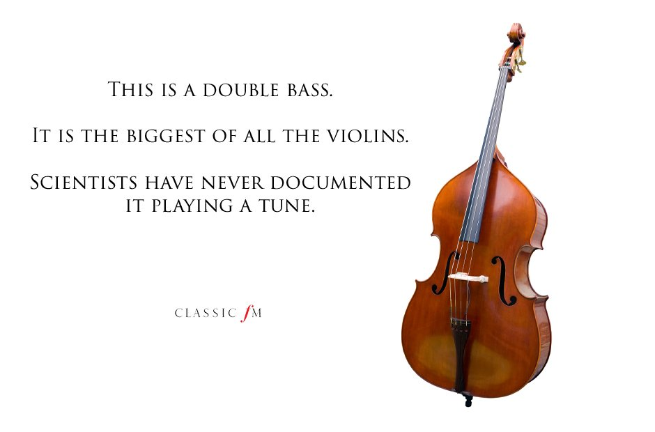 double bass Musical instruments explained: a begin