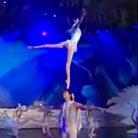 chinese circus swan lake